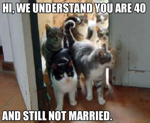 hi-we-understand-you-are-not-married