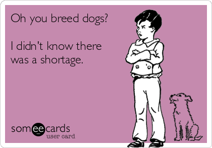 oh-you-breed-dogs-i-didnt-know-there-was-a-shortage-3c5bc